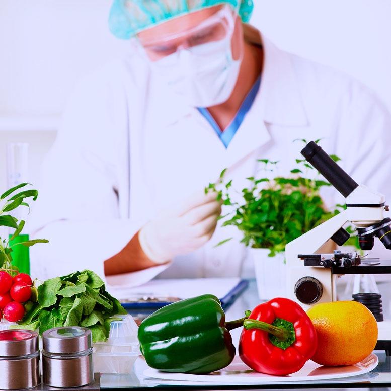 Ingeniería en Alimentos
