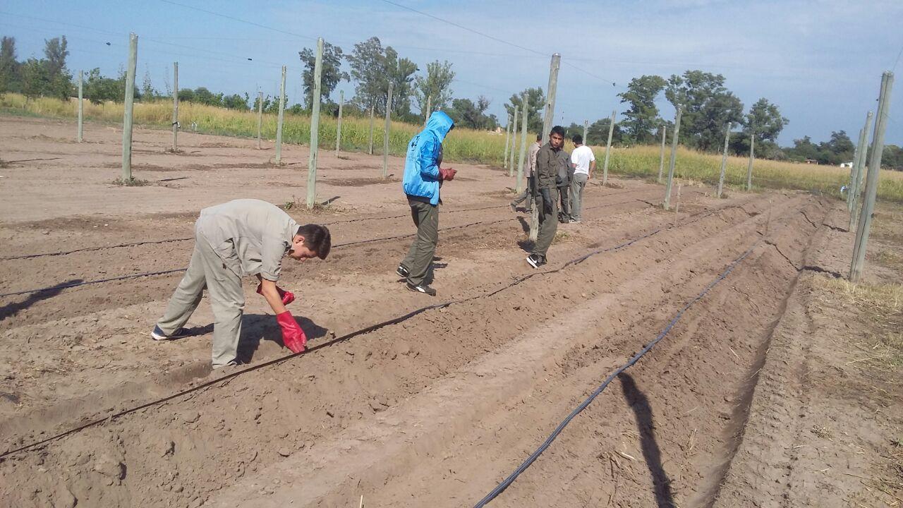 Escuela de Agricultura, Ganadería y Granja 2