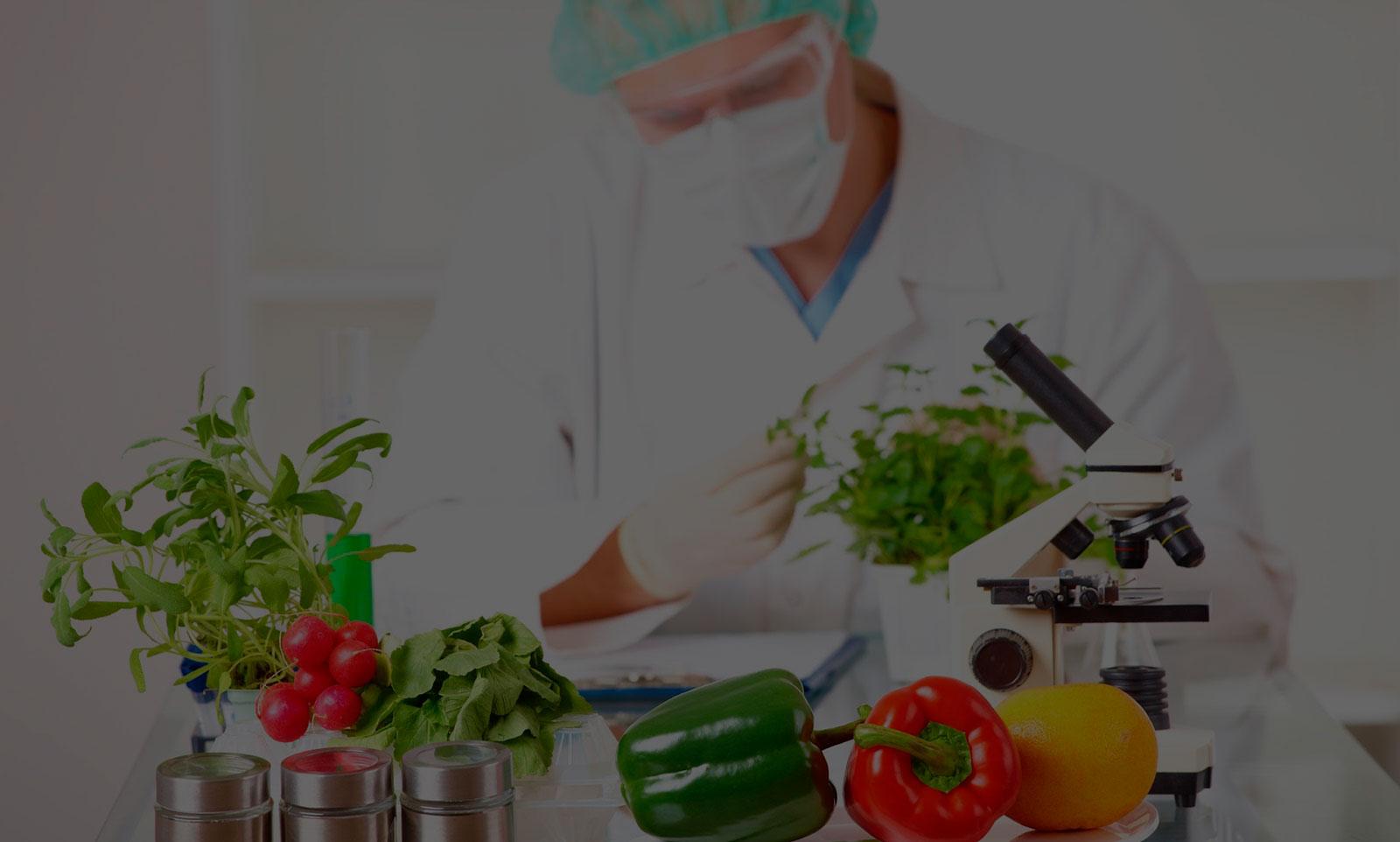 Doctorado en Ciencia y Tecnología de los Alimentos