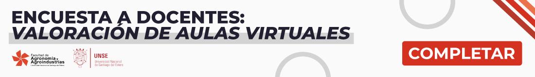 Encuesta a Docentes Valoración de Aulas Virtuales
